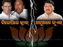 BJP-CRACK-jpg